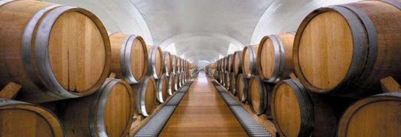 Visita e degustazione vini della Campania presso la cantina Feudi di San Gregorio