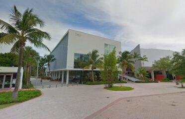 Università di Miami