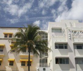 Tour della città di Miami e tour in barca a Biscayne Bay