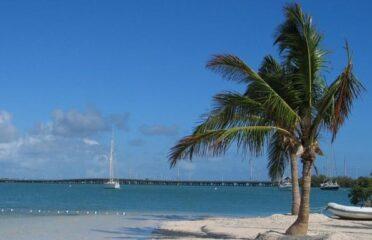 Gita di un giorno a Key West con giro in barca con fondo di vetro