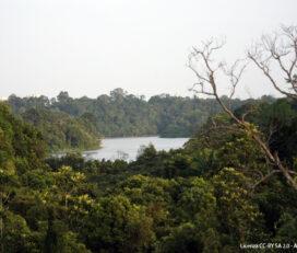 Riserva Naturale del Bacino Idrografico Centrale