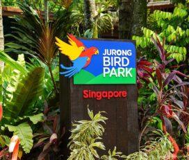 Parco Ornitologico Jurong