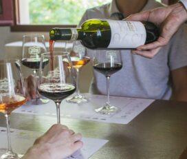Degustazione di vini alla Tenuta di Artimino